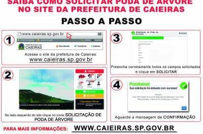 Cidadão caieirense pode solicitar a poda de árvores pelo site da Prefeitura