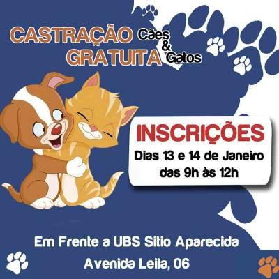 Inscrições para a campanha de castração gratuita de cães e gatos de Caieiras serão feitas nos dias 13 e 14 de janeiro