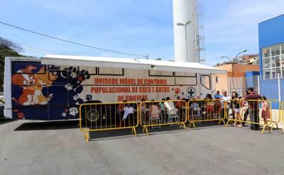 Ônibus de castração gratuita de cães e gatos de Caieiras estará no Jardim dos Eucaliptos no segundo semestre