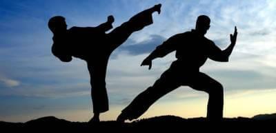 Já pensou em fazer lutas?