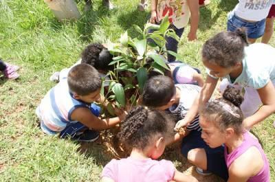 """Projeto """"Semeando o bem"""" une Secretarias Municipais de Caieiras e comunidade para realizar melhorias em escola"""